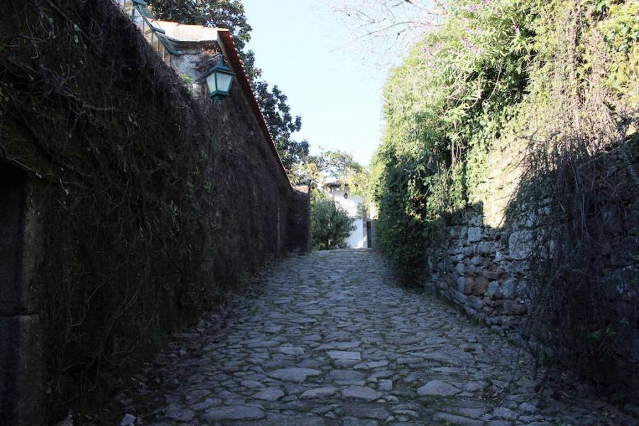 FANZERES, ,Demeure,A vendre,1066