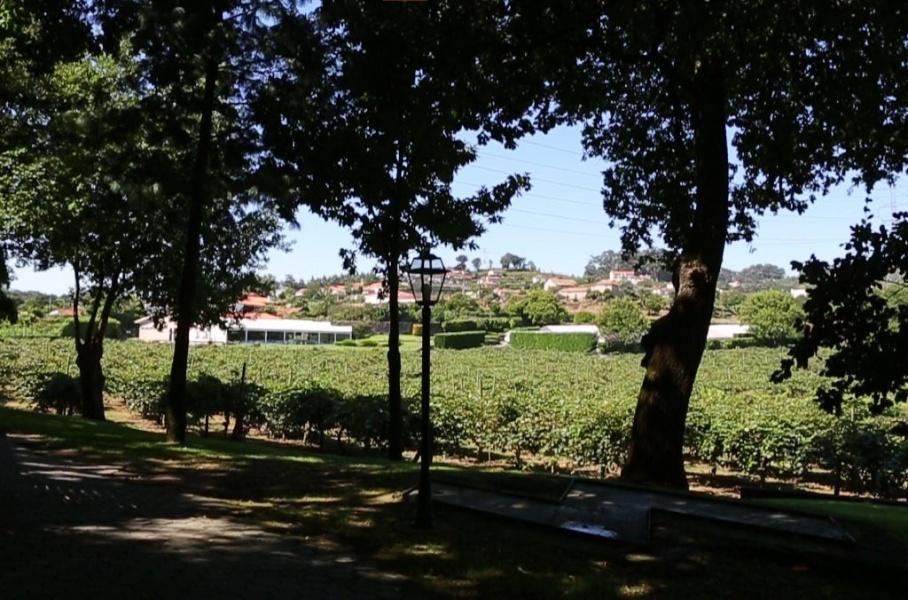 Paredes, ,Demeure,A vendre,1067